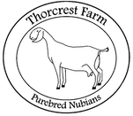 Thorcrest Farm Purebred Nubians
